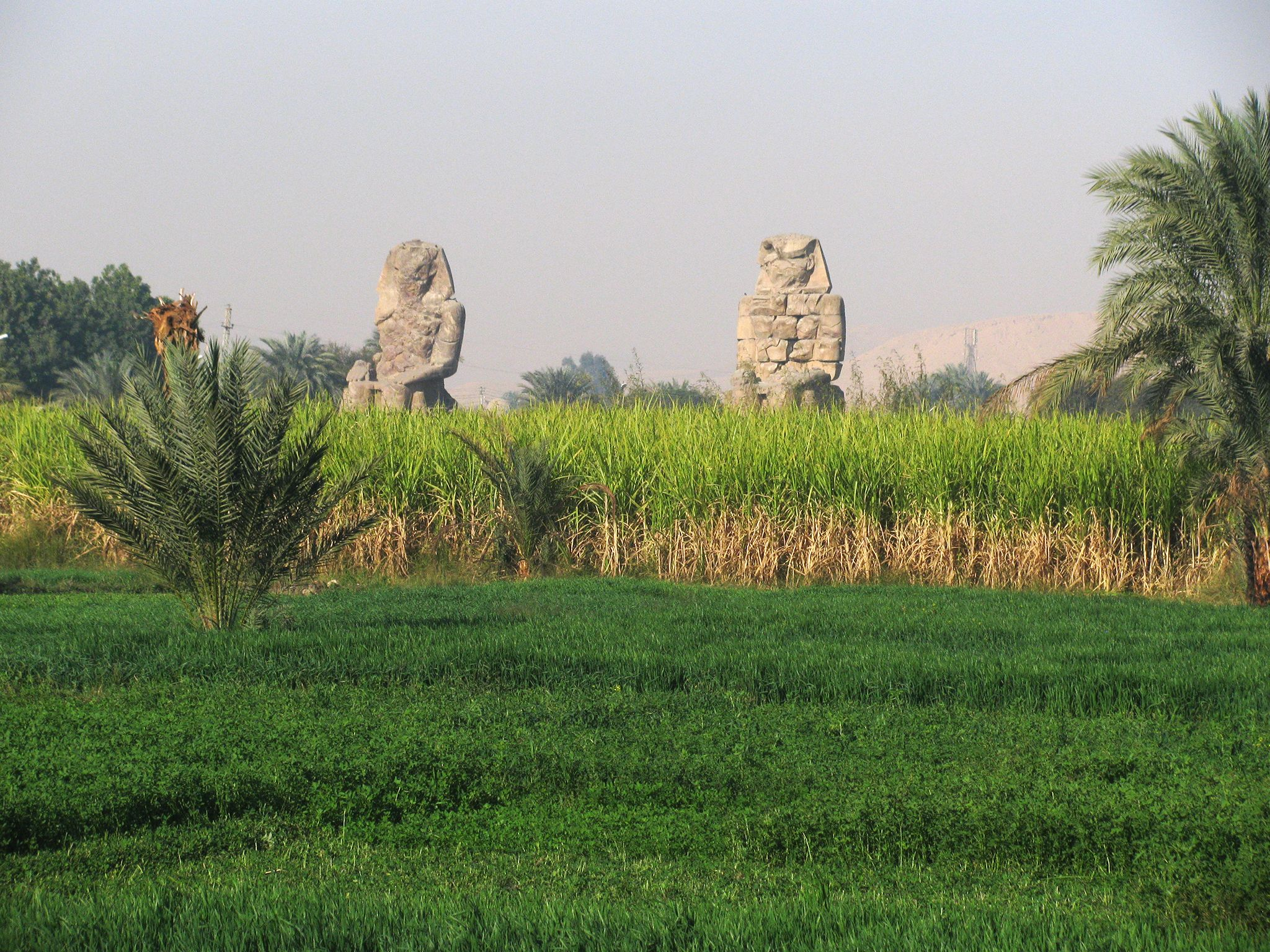 The so-called Colossi of Memnon surrounded by fields. Until recently they were all that remained... [Foto del giorno - aprile 2019]