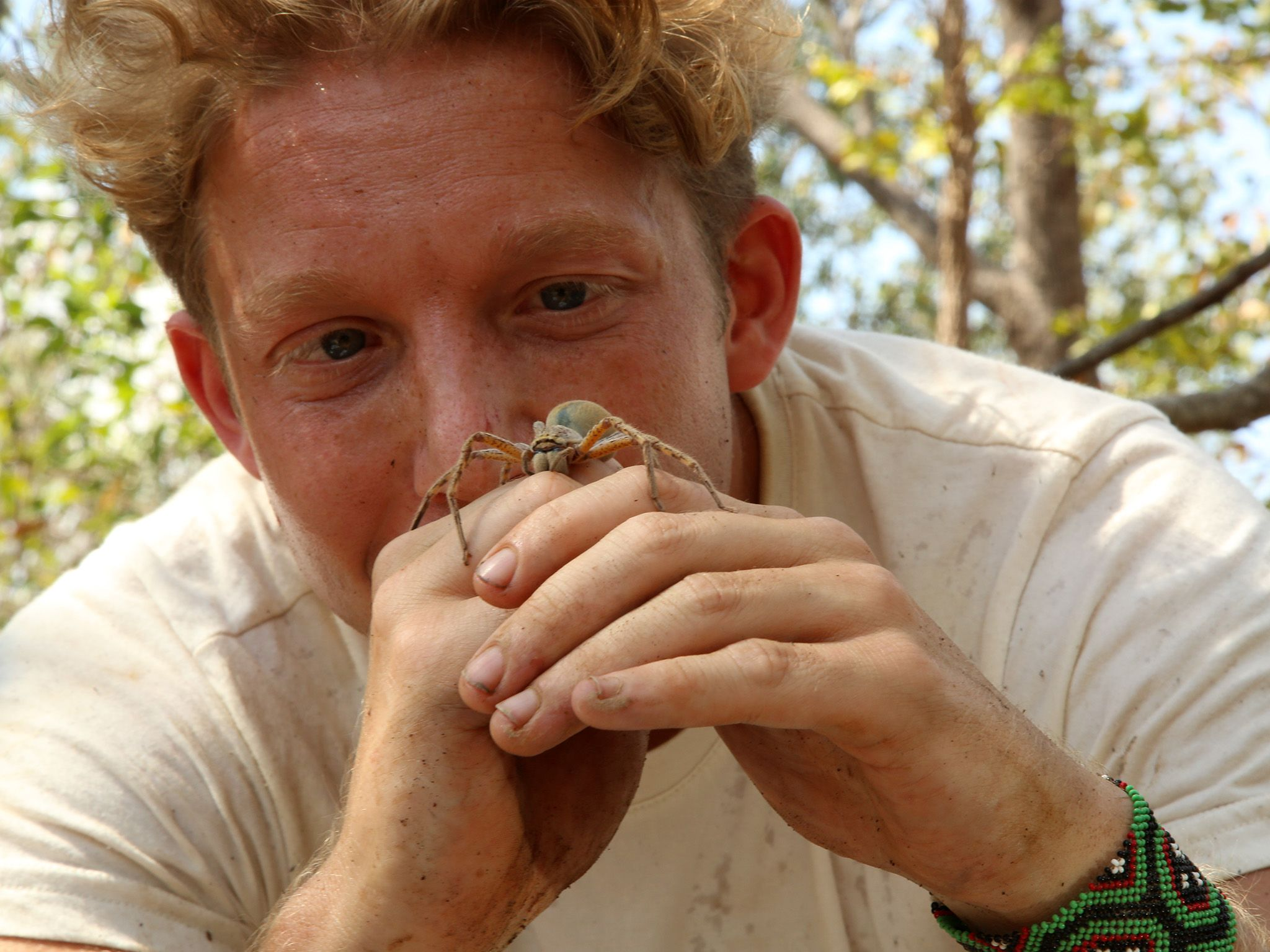 McKinley River Northern Territory, Australia:  Jack Randall examines a Huntsman spider before... [Photo of the day - August 2019]