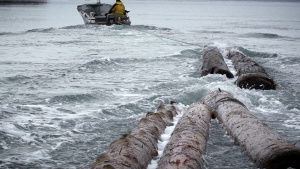 Port Protection, Alaska:  Sam... [Photo of the day - 19 AUGUST 2019]