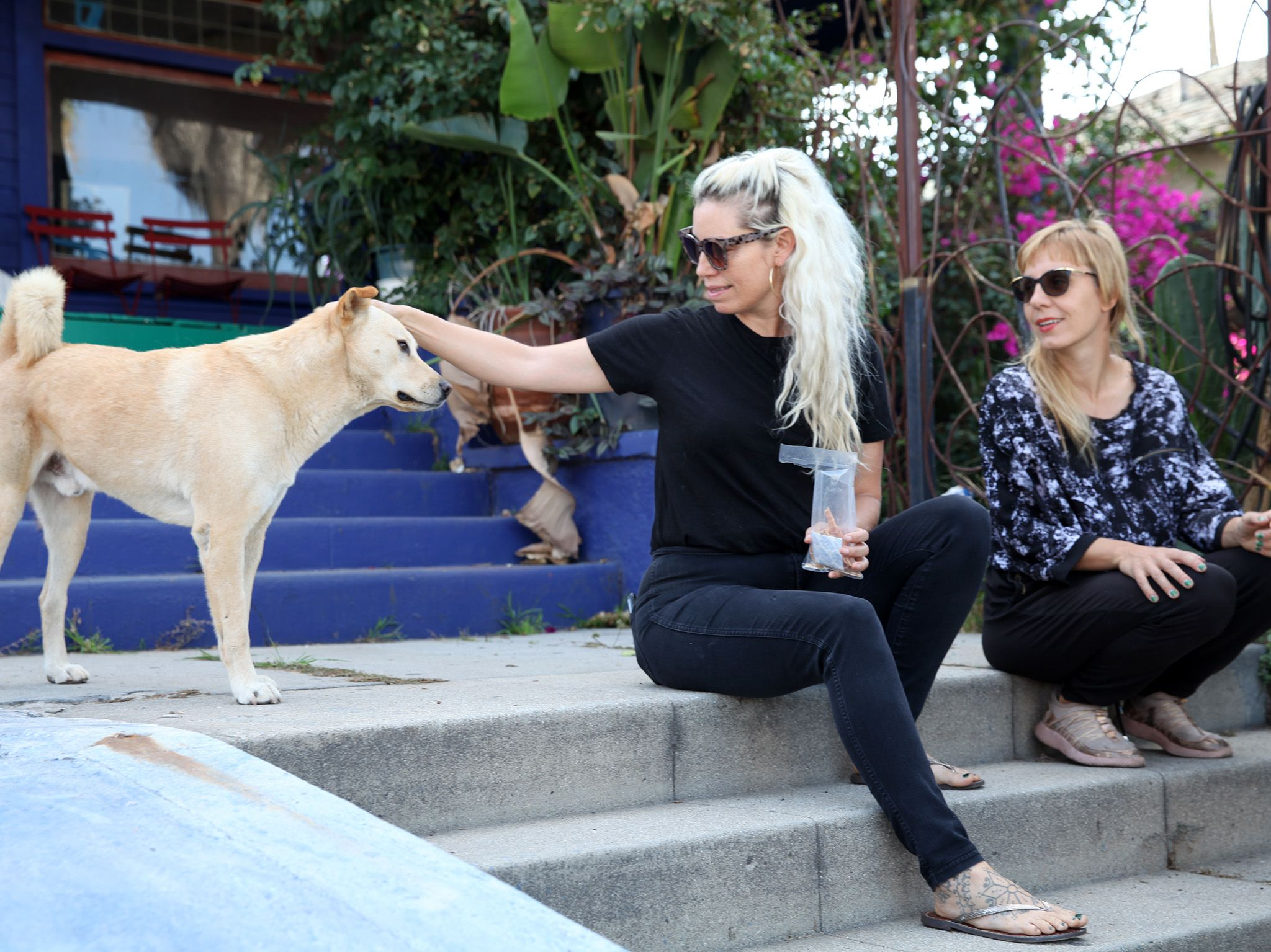 Corazon del Sol and Linda Franke sitting on the front steps of their home and petting Lou. This... [Photo of the day - September 2019]