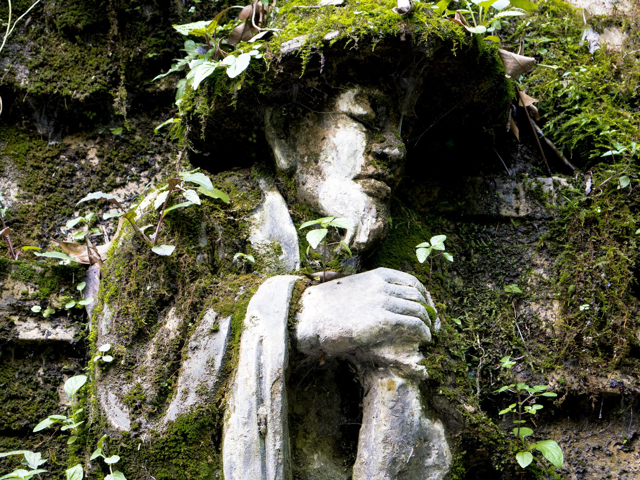 Emei Mountain, Sichuan, China: Moss covered sculpture of man by Buddhist temple. This image is... [Photo of the day - October 2019]