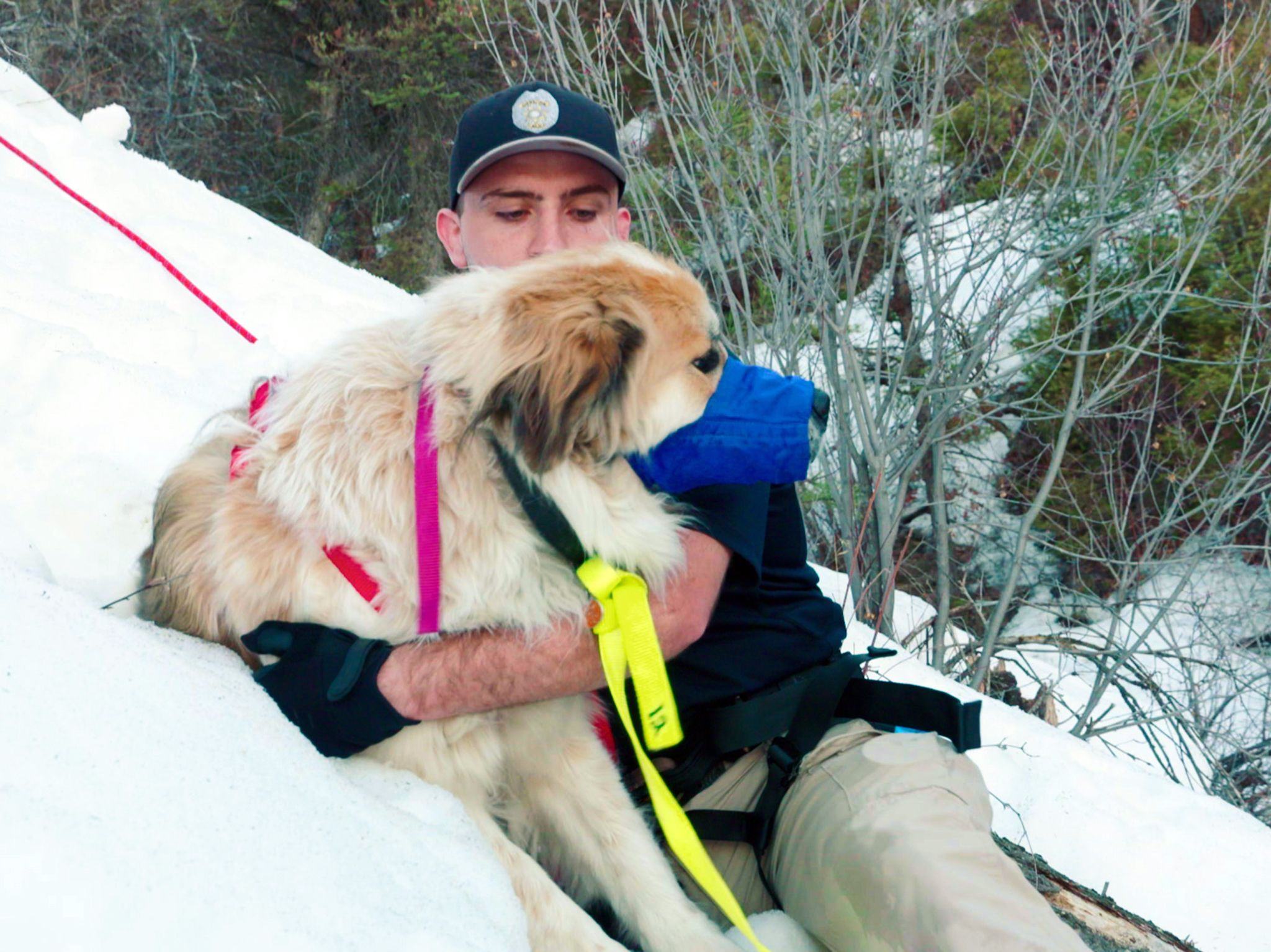 Larkspur, CO: ALE officer Tim Rice guides Izzy, the stranded dog, down a mountain. This image is... [Photo of the day - نوامبر 2019]