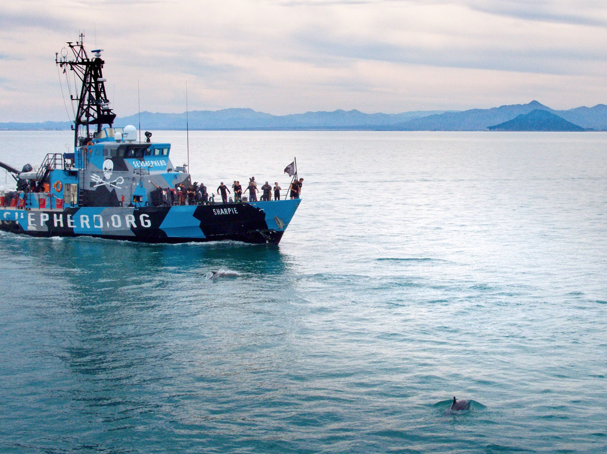 Sea Shepherd Vessel in the coastal waters of San Felipe.  This image is from Sea of Shadows. [Photo of the day - November 2019]