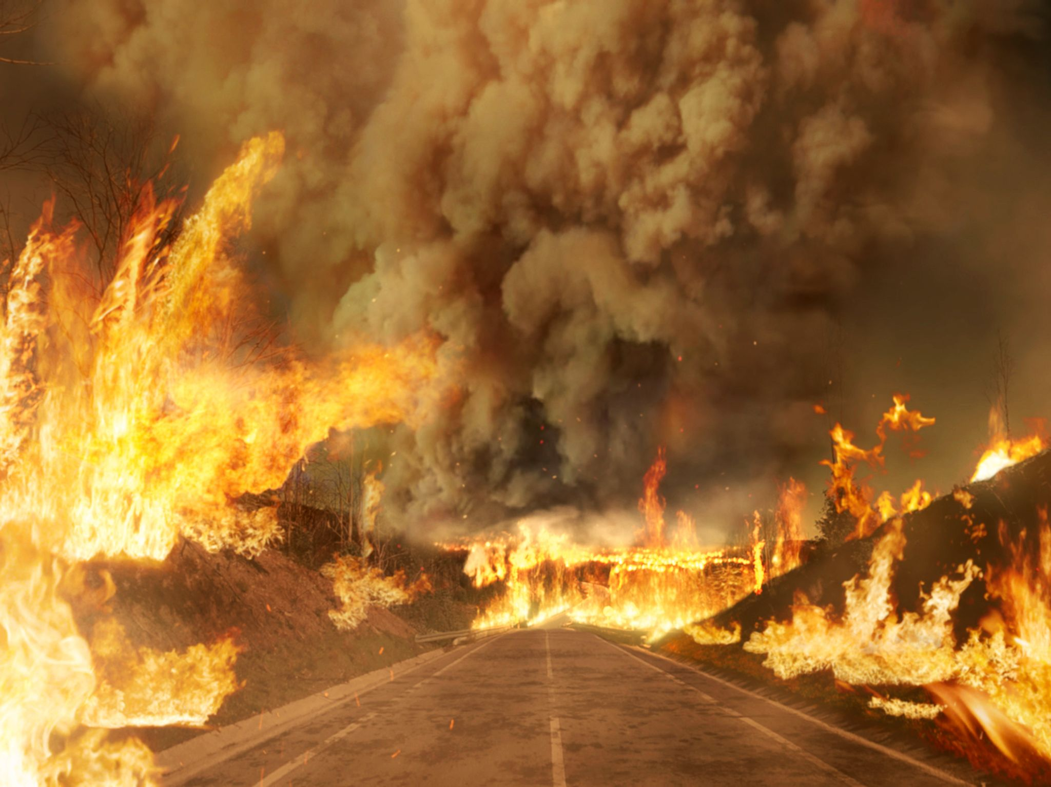 CGI: A fire rages over the N236 road. This image is from Witness to Disaster. [Photo of the day - December 2019]
