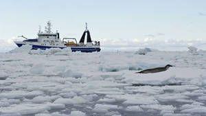 Expedition Antarctica photo