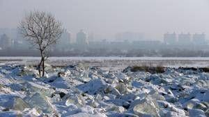 Ice City photo