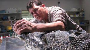 Amazing Crocs photo