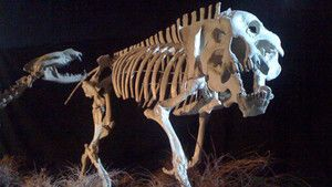 Prehistoric Predators Images photo