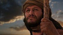 Book of Exodus show