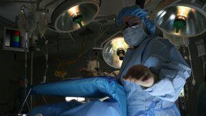 Emergency Transplant 照片