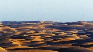 Sahara 照片