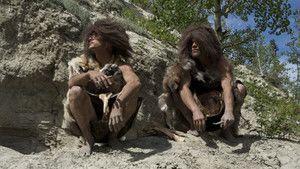 Evolutions: Bear Necessities 照片
