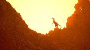 Evolutions: Last Living Dinosaur 照片