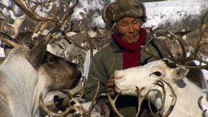 سيبيريا صورة