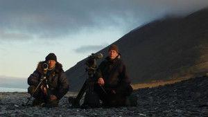 The Arctic photo