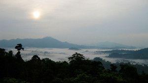婆羅洲 Borneo 照片