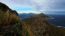 Falkland Islands show