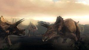 Inside T. Rex 照片