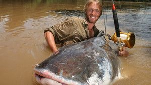 Colossal Catfish photo