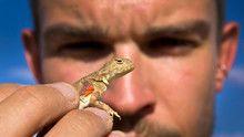 Mongolian Death Worm show