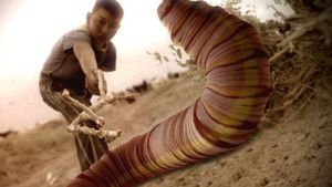 Mongolian Death Worm photo