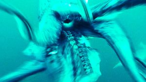 Alien Squid Invasion photo