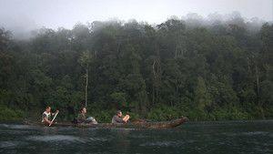 Ape Man of Sumatra photo
