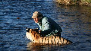 Tiger Man photo