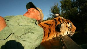 Tiger Man photo