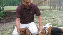Dog Whisperer 3 Episodes 6-10 show