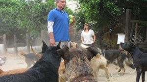 Dog Whisperer 3 Episodes 6-10 photo