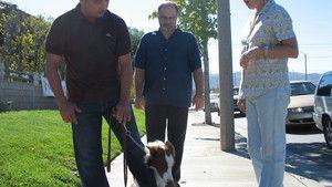Dog Whisperer 3 Episodes 11-15 photo