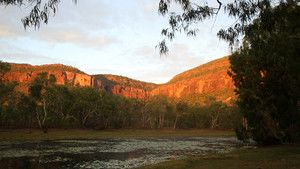 The Outback photo