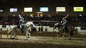 The Vegas Joust photo