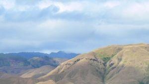 الجزيرة صورة