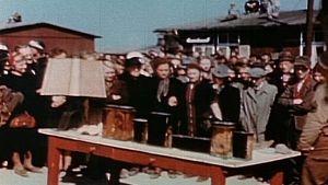 Holocaust Artifact Mystery photo