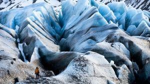 Frozen Paradises photo
