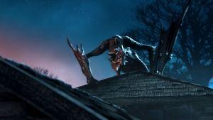 Dragon Fights photo