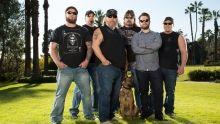 Elite Dog Training show