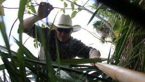 Python Hunters photo