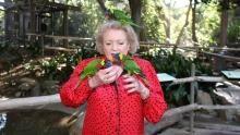 Betty White's Big Cats show
