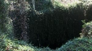 Sinkhole Investigators photo