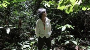 5 anni nella giungla foto