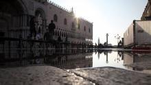 Majestic Venice show
