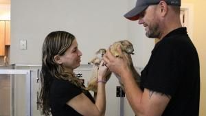 Exotics Animal Hospital photo