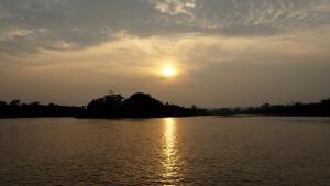 Wild Congo photo