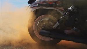 Born To Ride photo