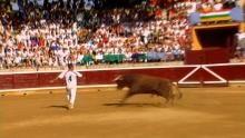 Raging Bull show