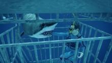 هجوم القرش برنامج