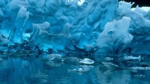 Frozen Paradise photo